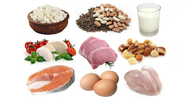 Active8me whats the big deal about protein shakes foods rich in protein