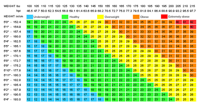 Active8me how to fix being skinny fat BMI chart