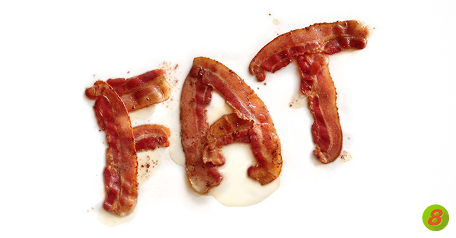 Active8me fact or fiction get the skinny on dietary fat